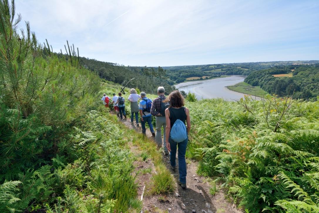 Groupe de randonneurs sur un sentier longeant un estuaire