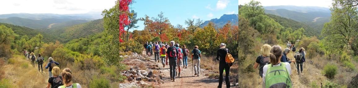 Des randonneurs des clubs affiliés à la FFRandonnée Var pratiquent la randonnée pédestre et la marche nordique dans le Var et dans le Massif des Maures.