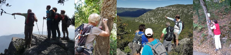 Des animateurs de randonnée font découvrir les paysages. Des bénévoles balisent des GR® (sentiers de Grande Randonnée) et PR® (Promenade et Randonnée).