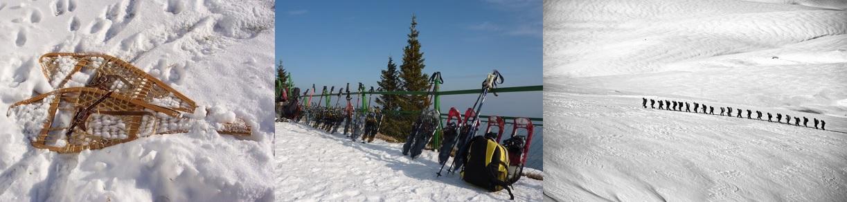 Raquettes à neige, équipement utilisé pour marcher dans la neige. Plusieurs paires de raquettes à neige et bâtons. Licenciés d'un club marchant en montagne.