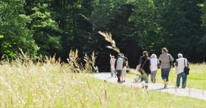 randonneurs et hautes herbes