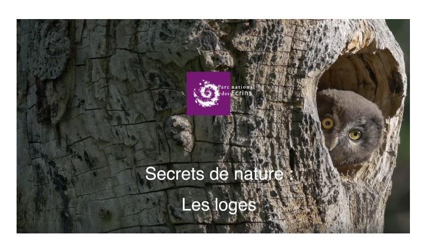 Secret de nature : les loges